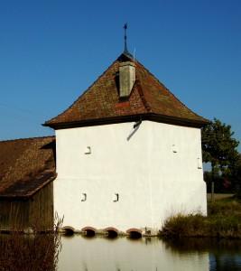 Fischhaus2